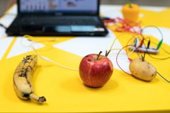 Fruit piano with kids. STEM education activity allow kids to play music with fruit and vegetables. Microcontroller converts keys stock image