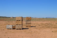Fruit Picking Boxes Royalty Free Stock Photography