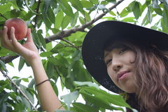Fruit picking girl at outer place Stock Photography