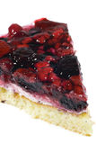 Fruit Pie. Closeup of delicious fruit pie with berries Stock Image