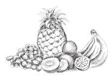 Fruit piece Royalty Free Stock Photography