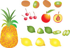 Fruit Pineapple,lemon,lime,kiwi,nectarine,cherry. Royalty Free Stock Images