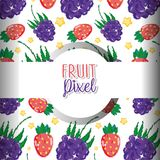 Fruit pixel background. Fruit strawberries and blackberries pixel background vector illustration graphic design Royalty Free Illustration