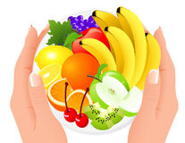 Fruit plate in human hands stock illustration