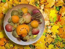 Fruit platter with spiced fruits on autumn leaves. Fruit platter with spiced fruits on yellow red and green autumn leaves, seasonal background and copy space Stock Images