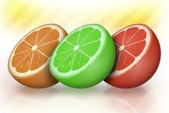 Fruit, Produce, Citrus, Grapefruit Royalty Free Stock Images