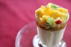 Fruit pudding stock image