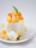 Fruit pudding Royalty Free Stock Photo
