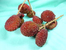 Fruit pulasan mûr Image stock