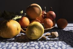 Fruit pumpkin, oranges, and nuts stilllife on a table cloth sunny and shady. It makes you feel at home, with a bunch of fruits to eat, the way Gramma would have Stock Photo