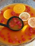 Fruit Punch Bowl Royalty Free Stock Image