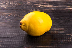 Fruit quince Stock Image