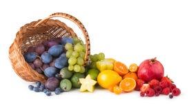Fruit rainbow stock photos