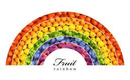 Fruit rainbow royalty free stock photography