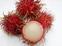 Fruit. Rambutan agriculture rad Sweet green garden Stock Image
