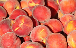 Fruit Ripe Peaches that have been harvested Royalty Free Stock Photos