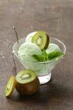 Fruit romig roomijs met groene kiwi stock fotografie