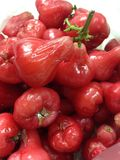 Fruit Rose Apple Thai Stock Images