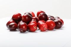 Fruit rouge de canneberge Photos libres de droits
