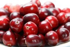 Fruit rouge de canneberge Photographie stock libre de droits