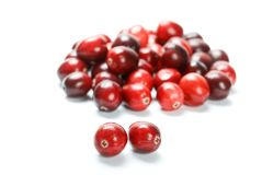Fruit rouge de canneberge Photos stock