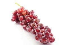 Fruit rouge de raisin sur le blanc de fond Images stock