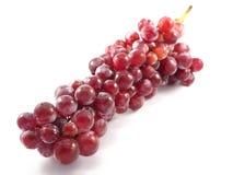 Fruit rouge de raisin sur le blanc de fond image libre de droits