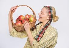 Fruit saisonnier d'automne de r?colte de chute verger, fille de jardinier avec le panier de pomme vitamine et nourriture suivante images stock