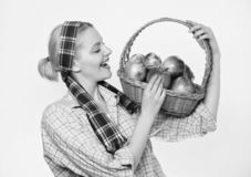 Fruit saisonnier d'automne de r?colte de chute verger, fille de jardinier avec le panier de pomme vitamine et nourriture suivante image libre de droits