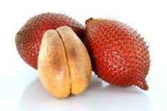 Fruit - sala, snake fruit on white background. Tropical fruit : (Snake/ Salak/ Salacca/ Sala) on white background Royalty Free Stock Image