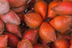 Fruit Salacca or zalacca.There are both sweet taste Stock Image