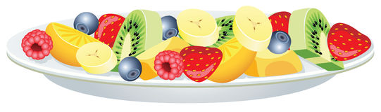 Fruit salad. Vector fruit salad on a plate Royalty Free Stock Image