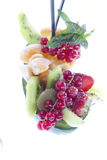 Fruit salad. End of the meal brought mixed fruit platter royalty free stock photo