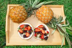 Fruit salad, berries, strawberries, blackberries, anana in coconut on a tray in green grass. stock image