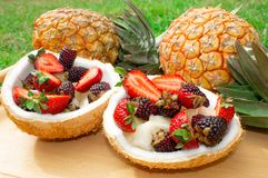 Fruit salad, berries, strawberries, blackberries, ananas in coconut. On the green grass. royalty free stock photography