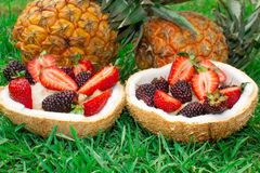 Fruit salad, berries, strawberries, blackberries, ananas in coconut. On the green grass. Still life. royalty free stock images