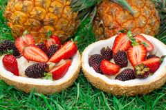 Fruit salad, berries, strawberries, blackberries, ananas in coconut. On the green grass. Still life. stock images