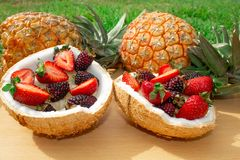 Fruit salad, berries, strawberries, blackberries, ananas in coconut. On the green grass. Still life. stock image