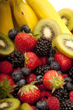 Fruit salad close up. Close up of kiwi,banana ,strawberry and blackberry, that make up a fruit salad Royalty Free Stock Images