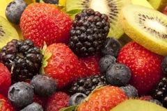 Fruit salad close up. Close up of kiwi,banana ,strawberry and blackberry, that make up a fruit salad Royalty Free Stock Image