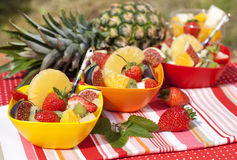 Fruit salad in colored bowls Royalty Free Stock Image