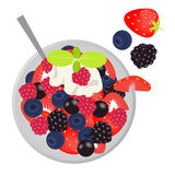 Fruit salad with cream and mint. Flat lay style. Vector illustration vector illustration
