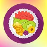 Fruit salad, flat design vector Royalty Free Stock Photos