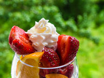 Fruit salad. On green background royalty free stock images