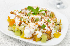 Fruit salad with nuts, yogurt and mint garnished with yogurt Royalty Free Stock Images