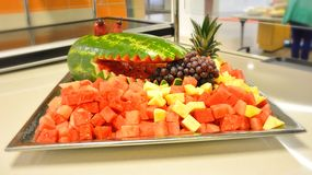 Fruit salad in the shape of an alligator Stock Photography
