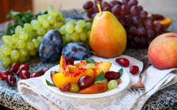 Fruit salad in white plate. Snack of fresh peaches, grapes, dogwood, plums, and mint leaves. Healthy Breakfast Stock Images