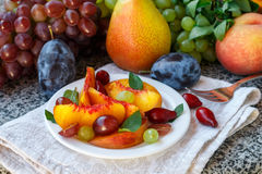 Fruit salad in white plate. Snack of fresh peaches, grapes, dogwood, plums, and mint leaves. Healthy Breakfast Royalty Free Stock Photos