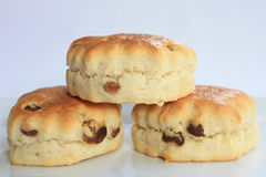 Fruit Scones. Three fruit scones on a white plate Royalty Free Stock Photo