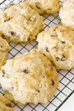 Fruit Scones on a Cooling Rack Stock Photos